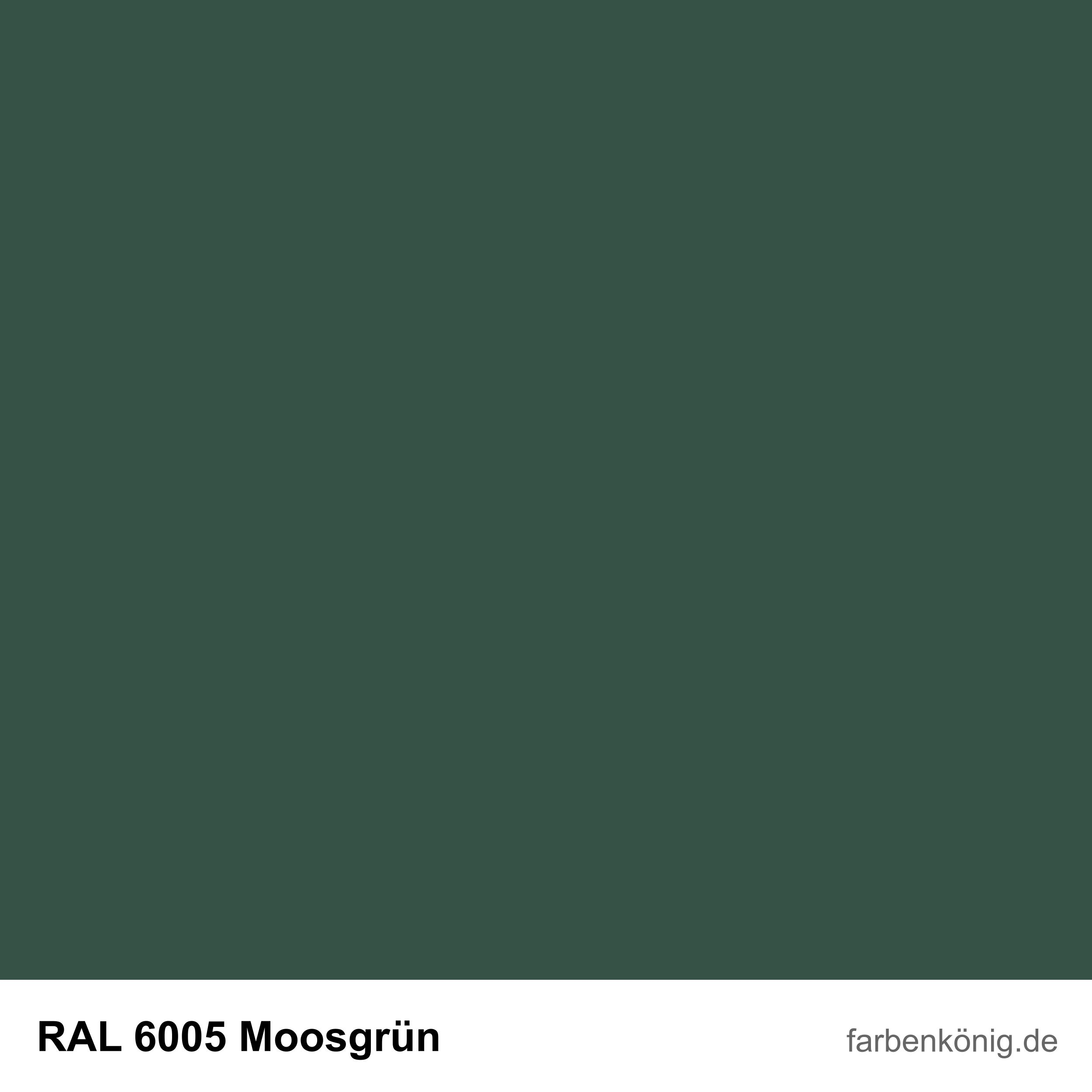 RAL6005