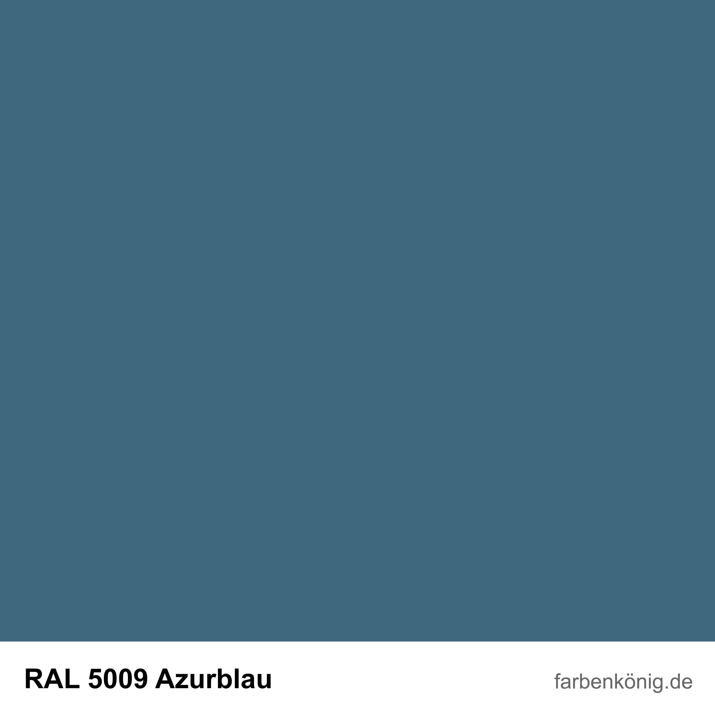 RAL5009