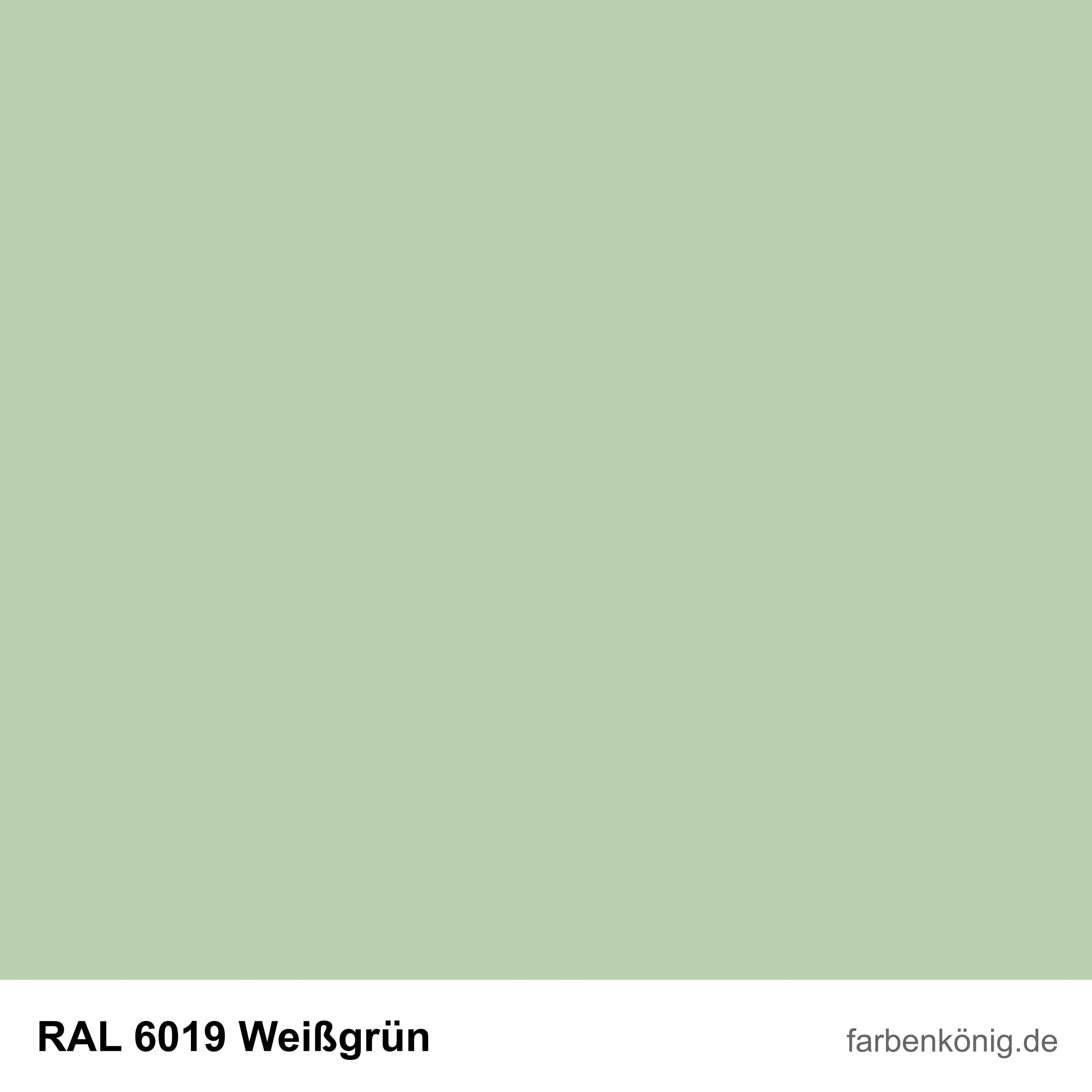 RAL6019