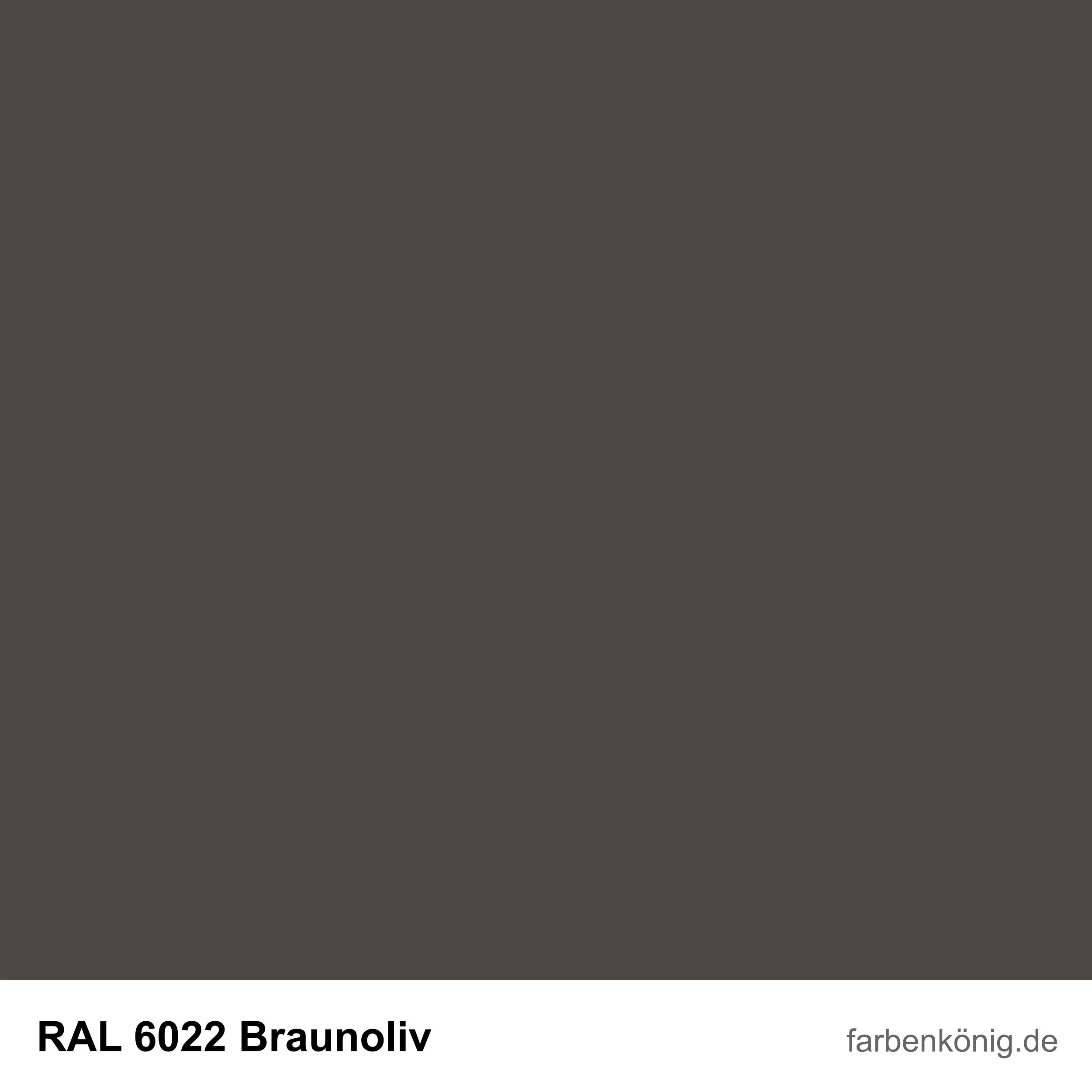 RAL6022