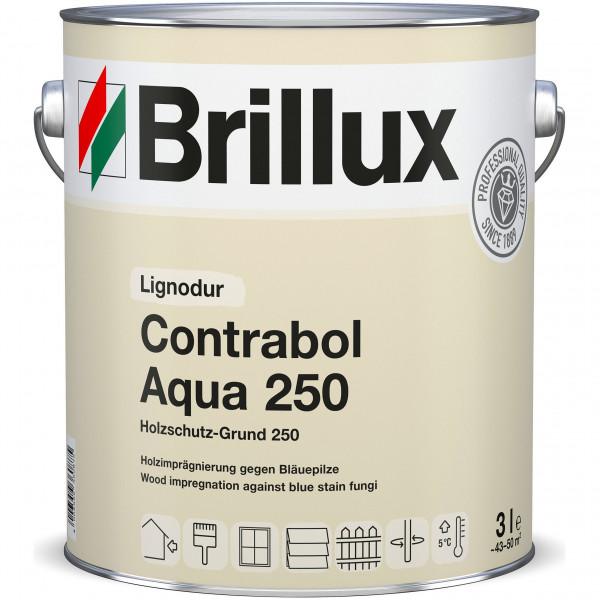 Holzschutz-Grund 250