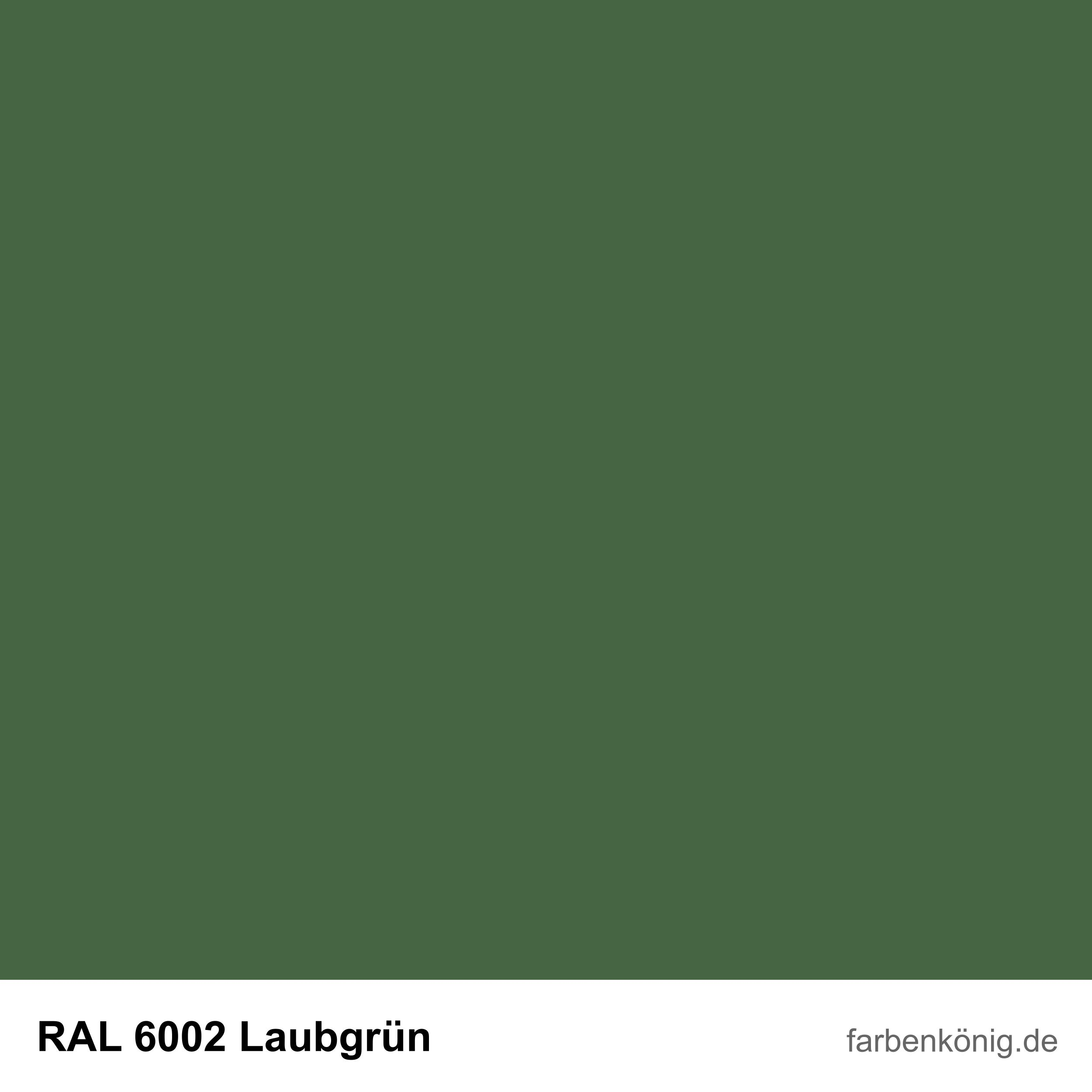 RAL6002