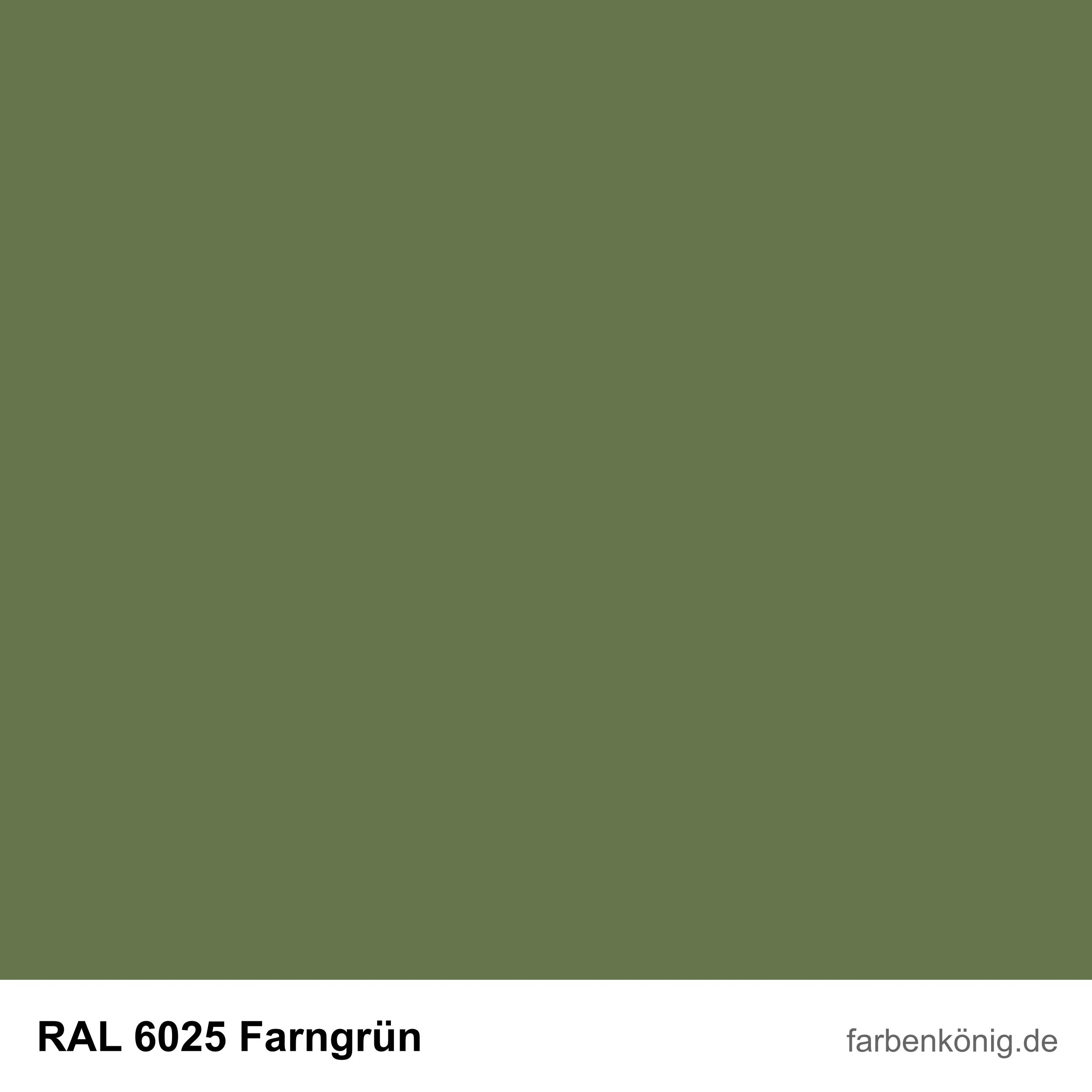 RAL6025