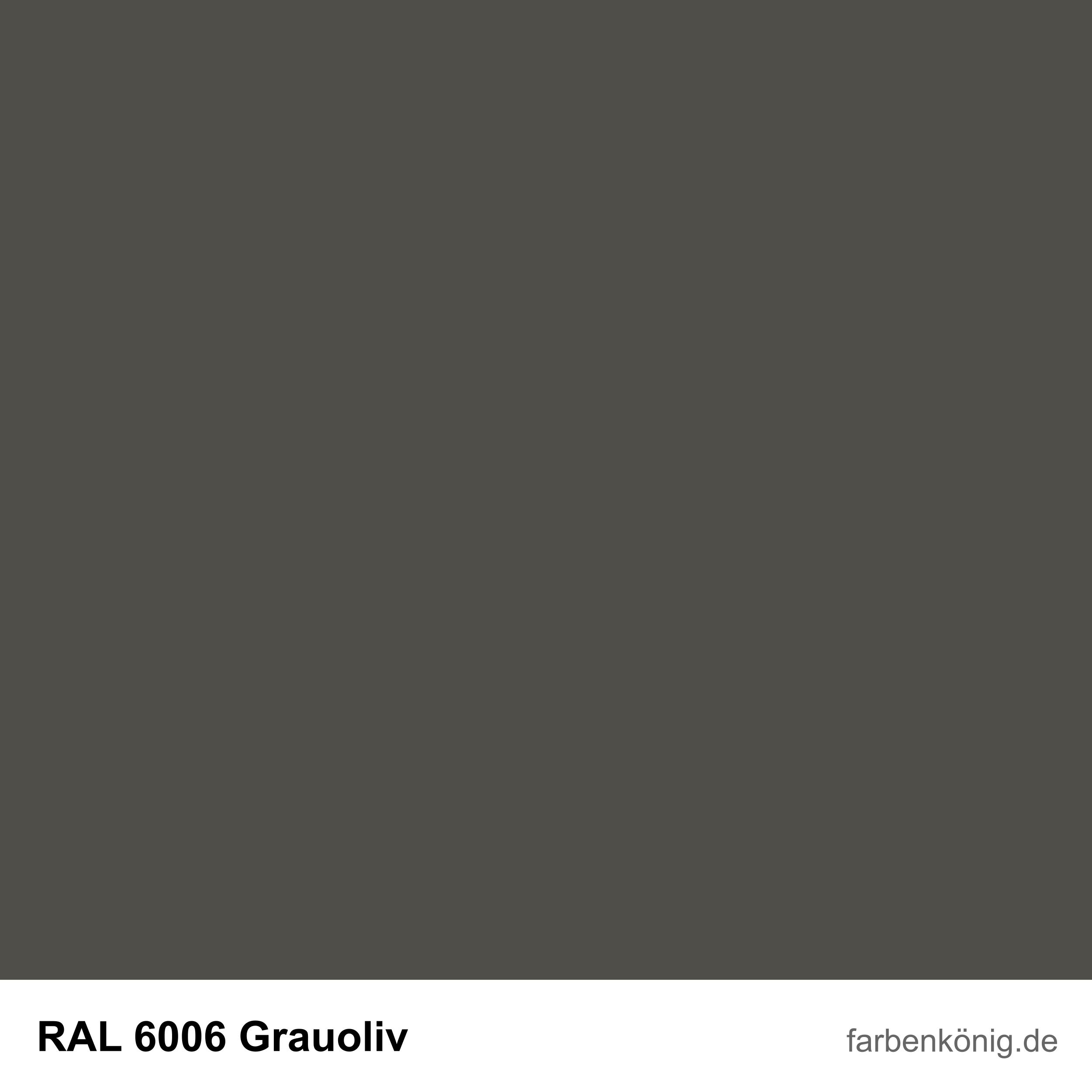 RAL6006