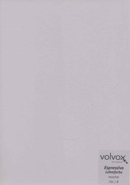Volvox Espressivo Lehmfarbe - muschel