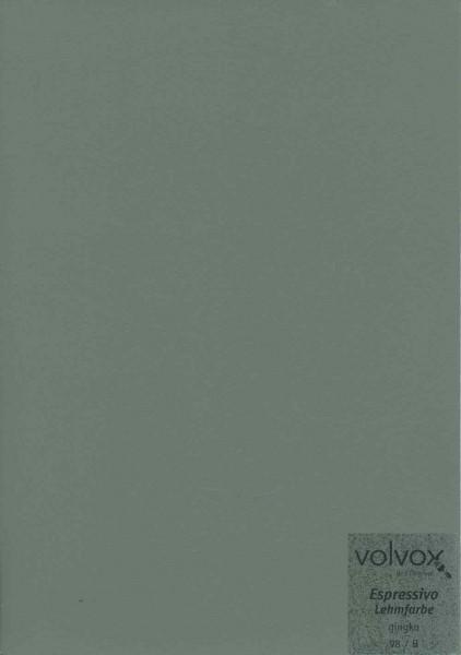 Volvox Espressivo Lehmfarbe - gay