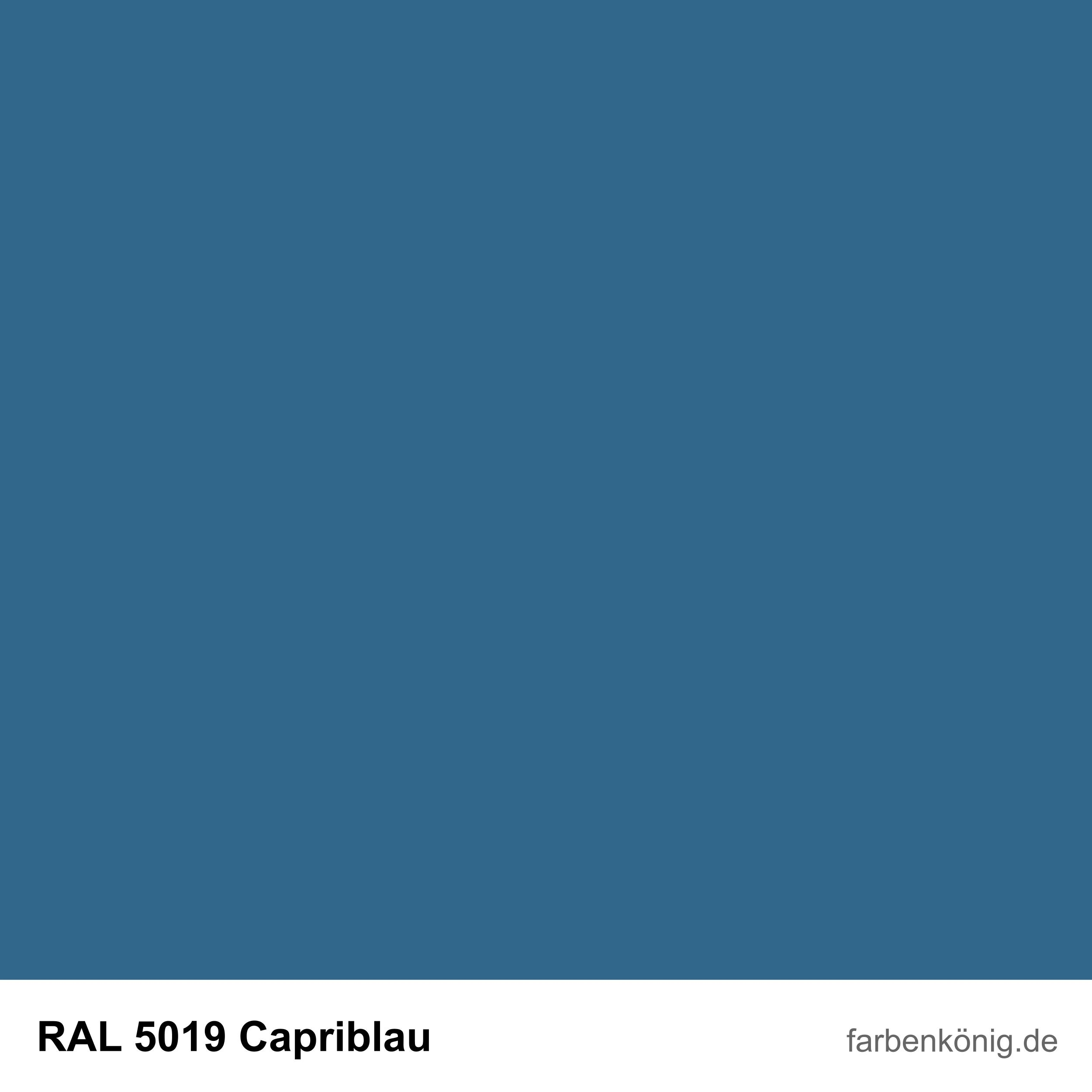 RAL5019