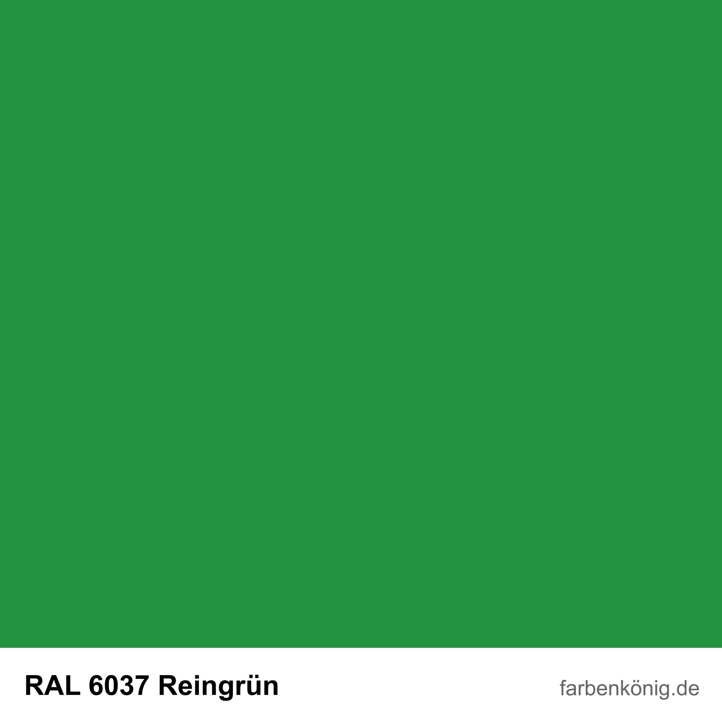 RAL6037
