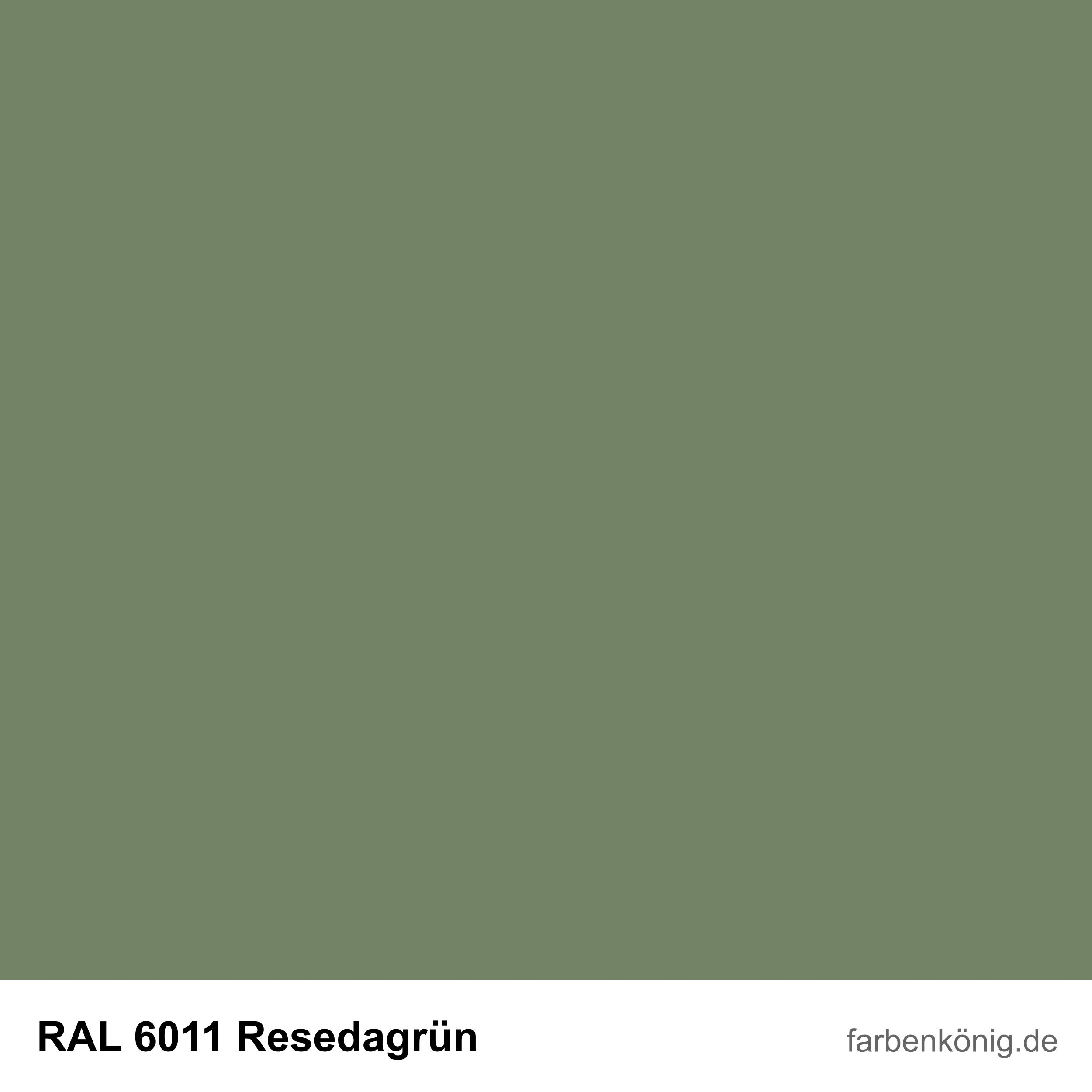 RAL6011