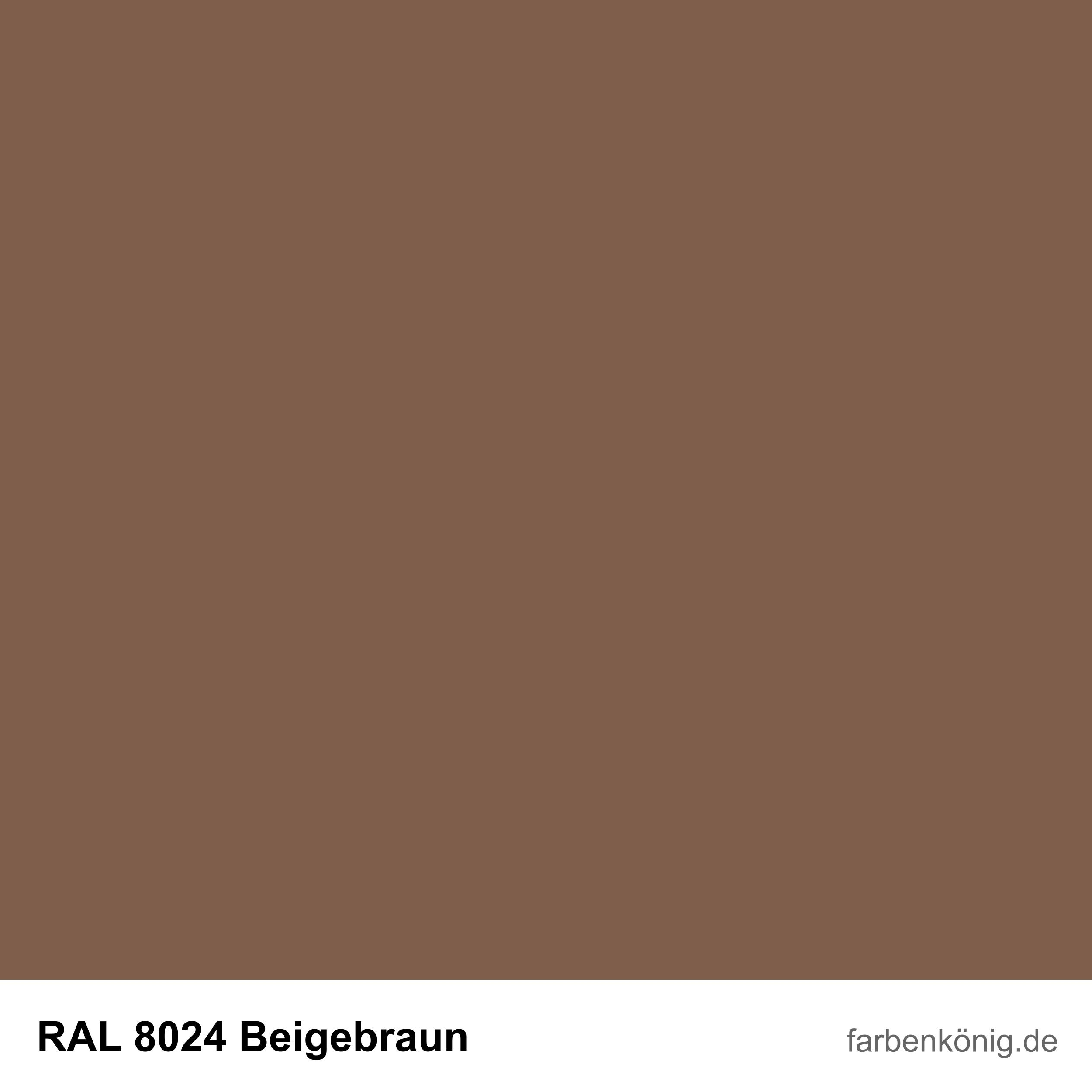 RAL8024
