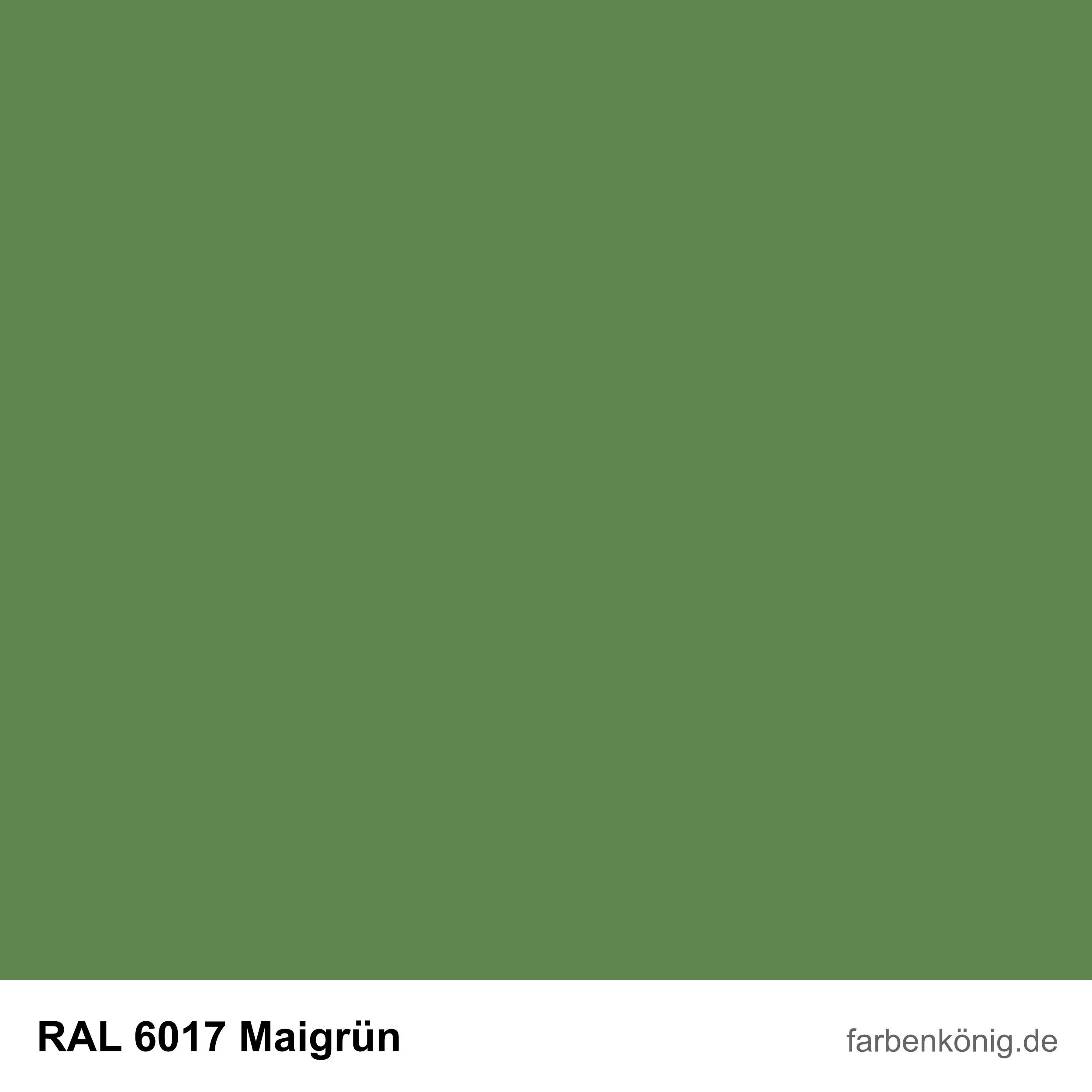 RAL6017
