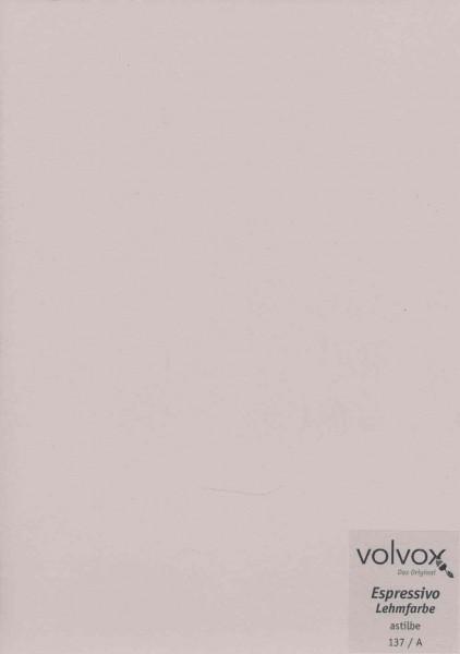 Volvox Espressivo Lehmfarbe - astilbe