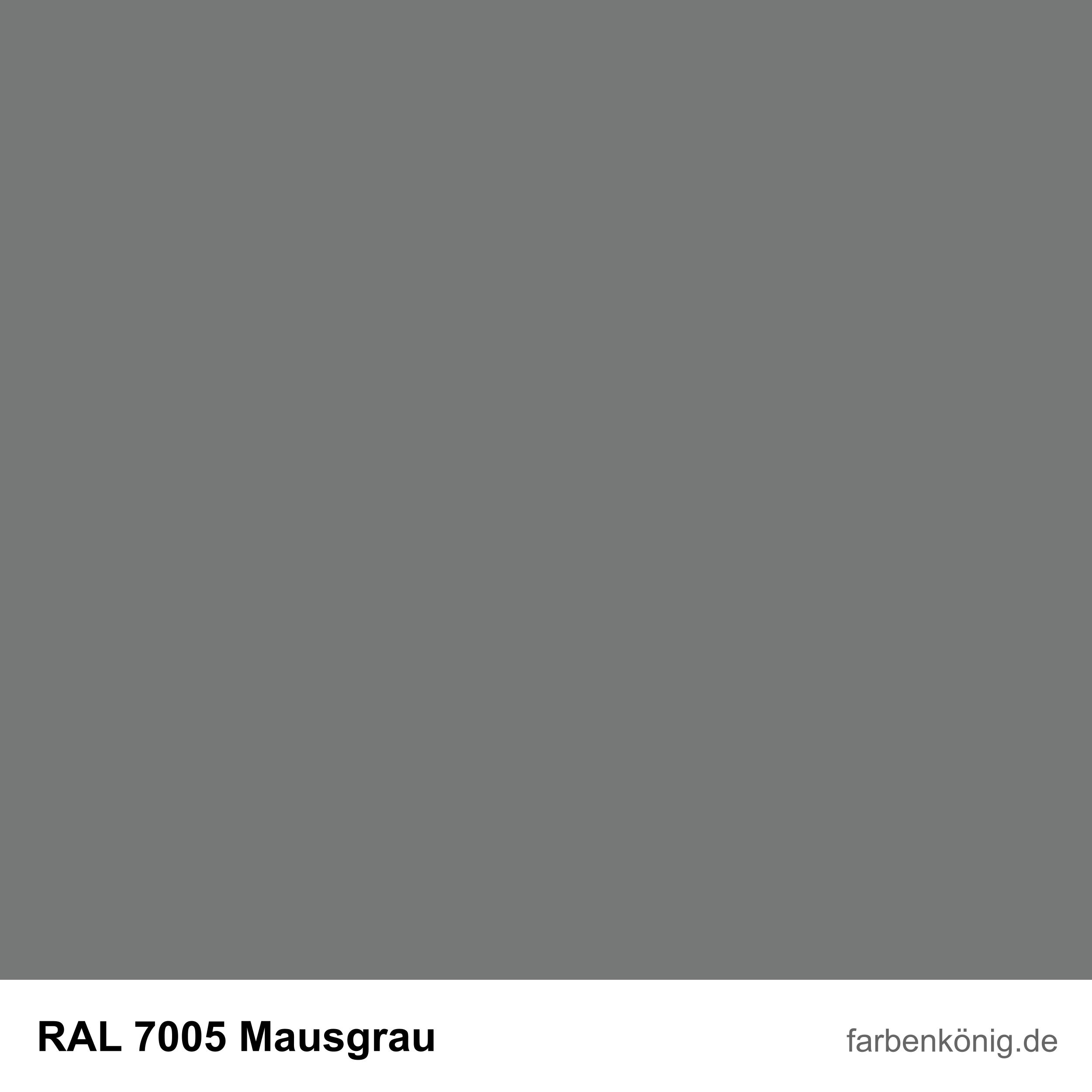 RAL7005