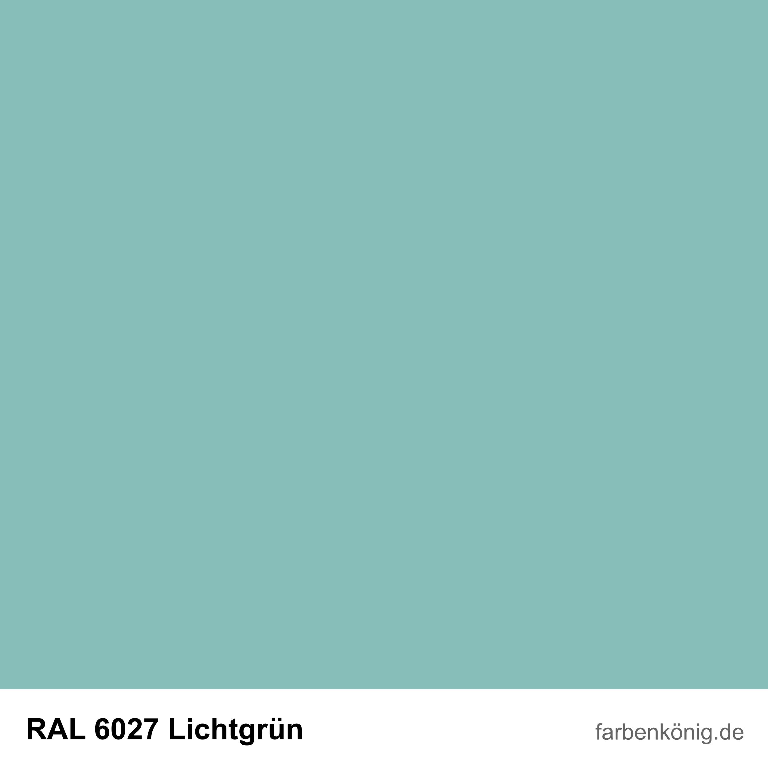 RAL6027
