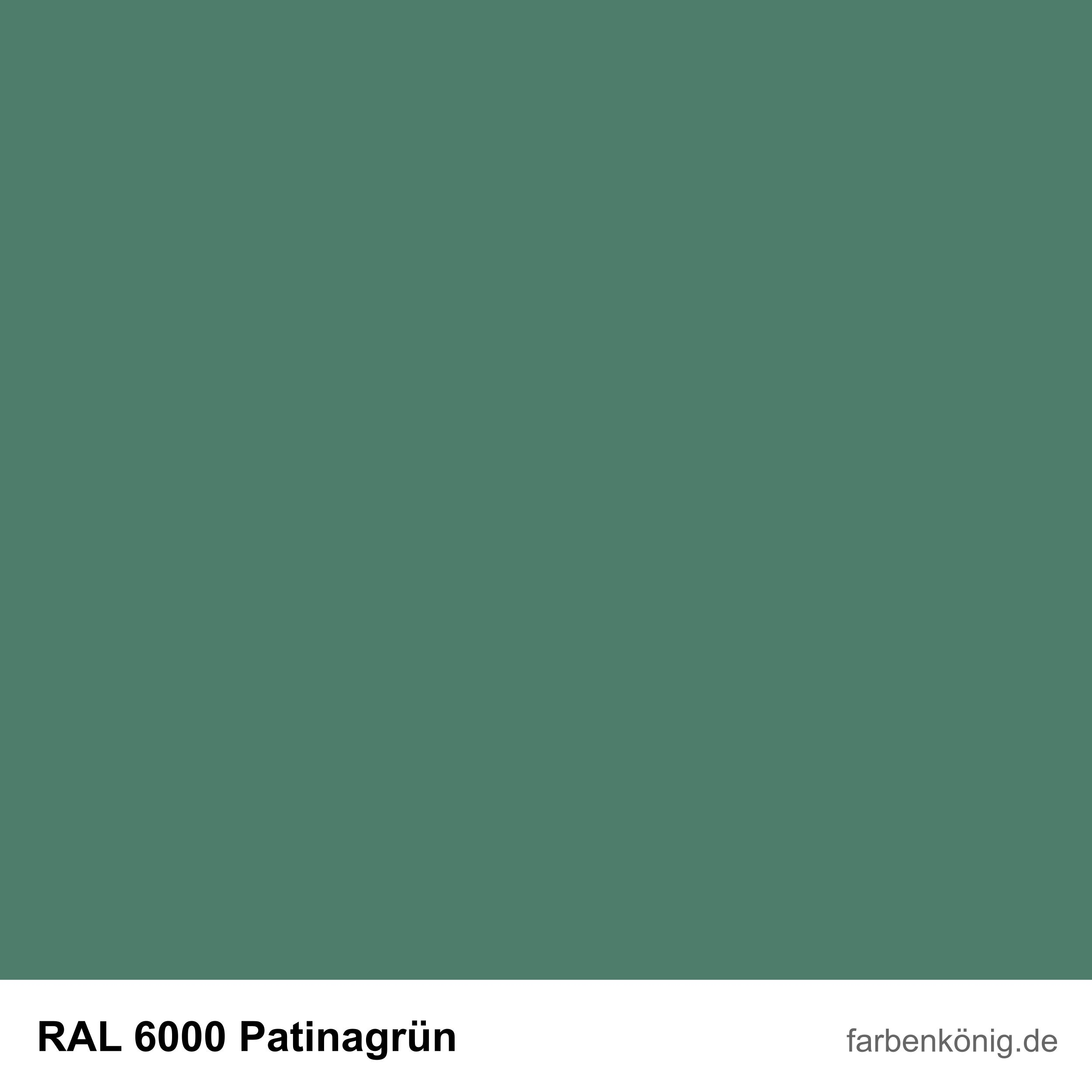 RAL6000