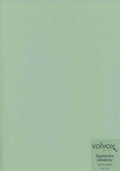 Volvox Espressivo Lehmfarbe - tierra verde