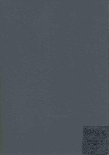 Volvox Espressivo Lehmfarbe - anthrazit