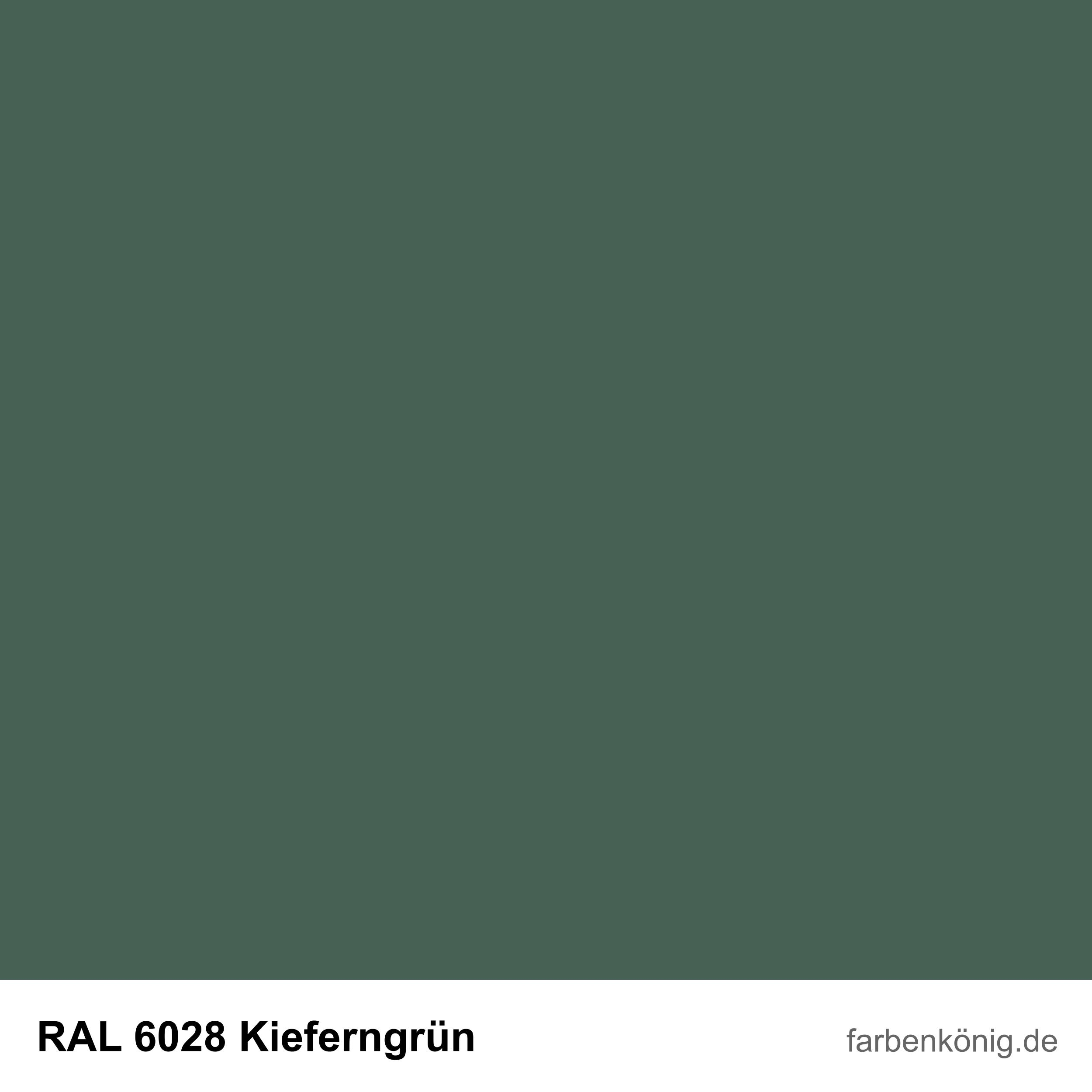 RAL6028