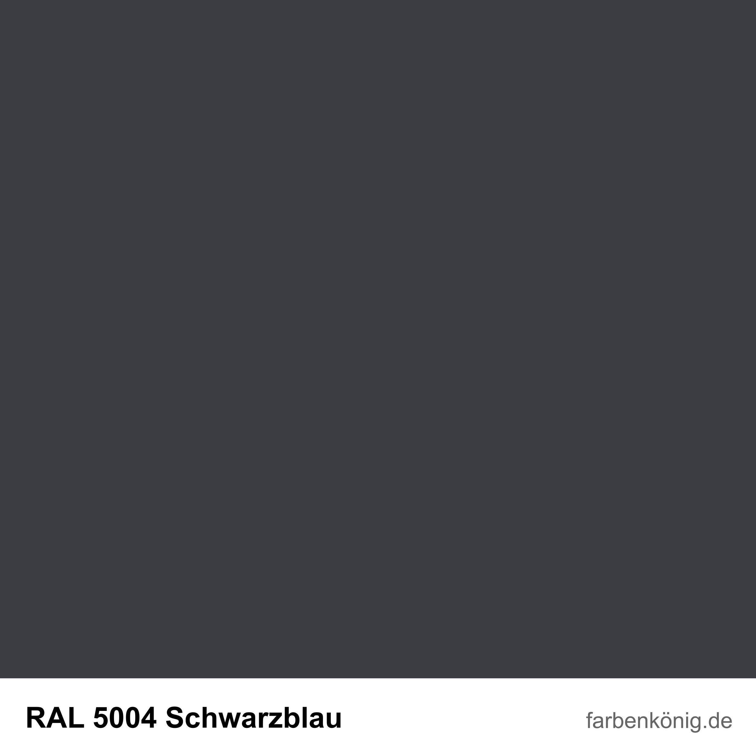 RAL5004