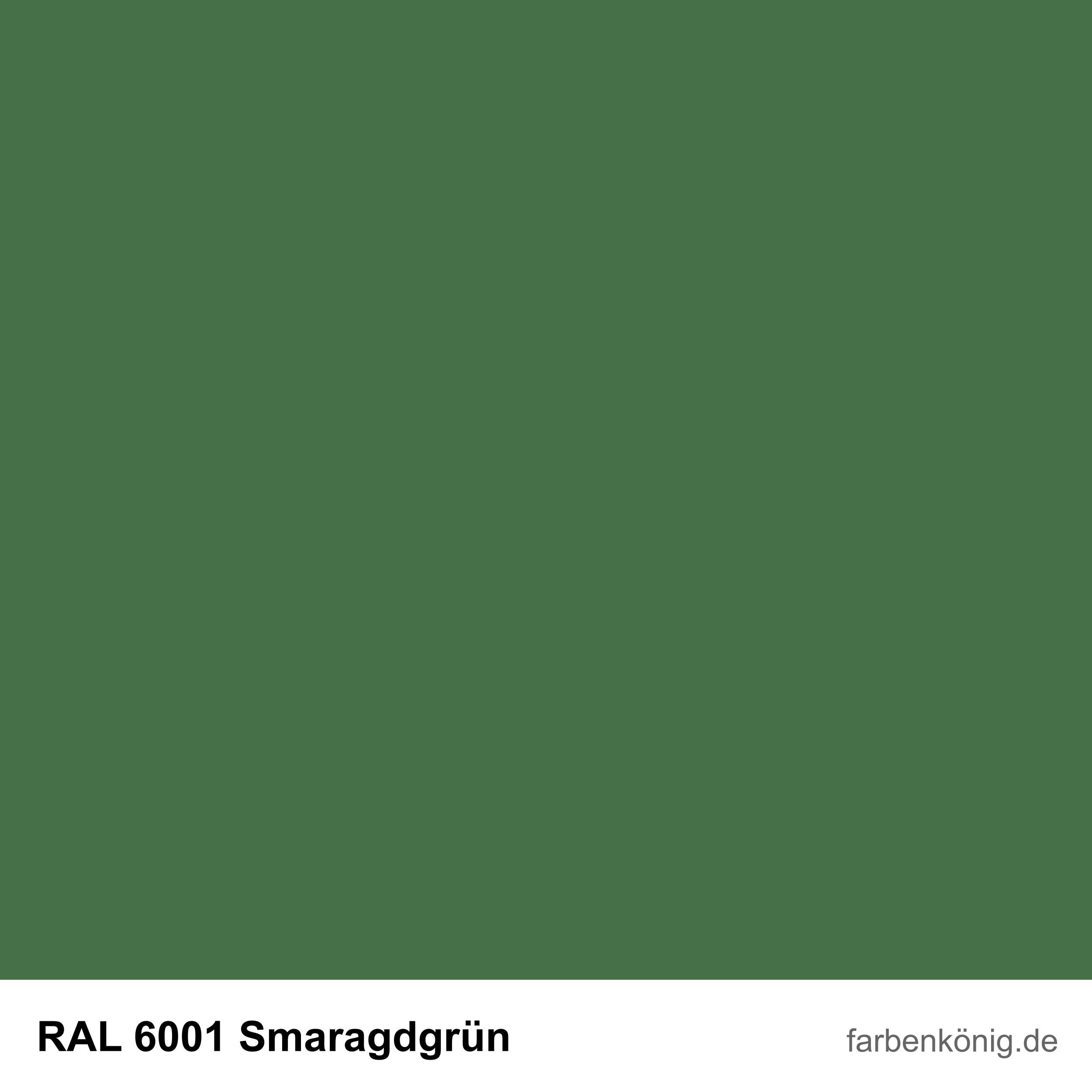 RAL6001