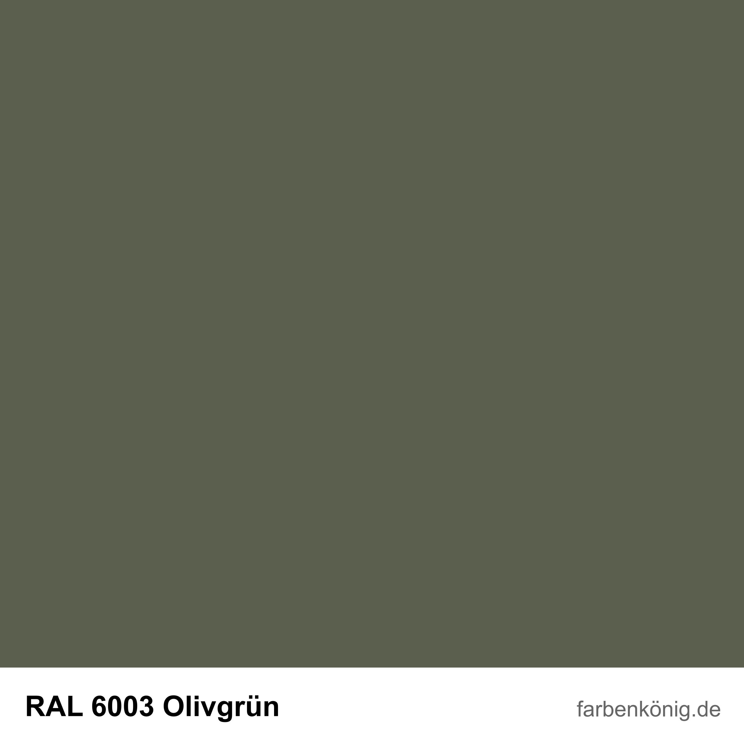 RAL6003