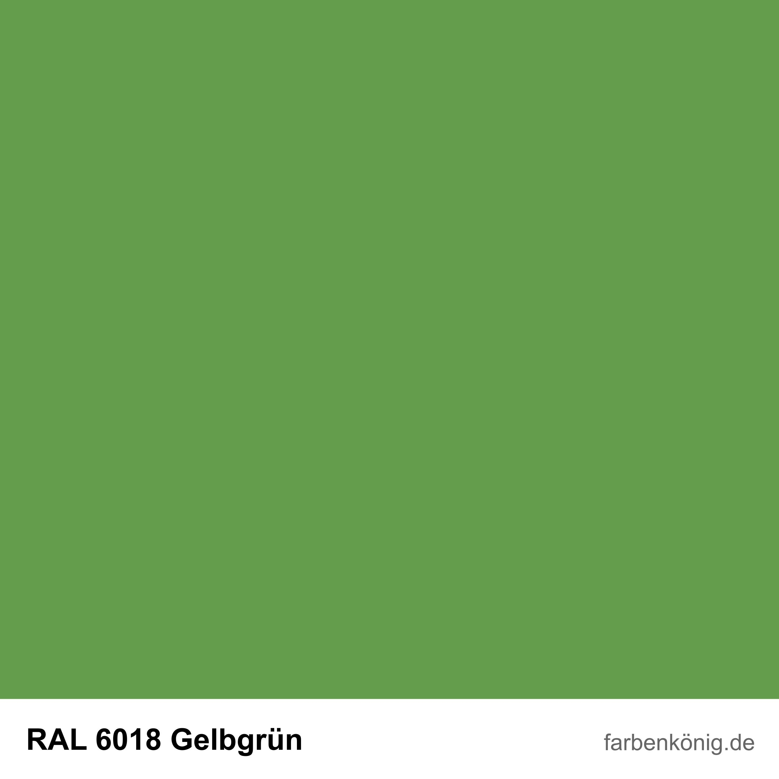 RAL6018